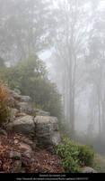Mist 2 by faestock