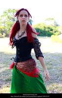 Gypsy 2.9 by faestock