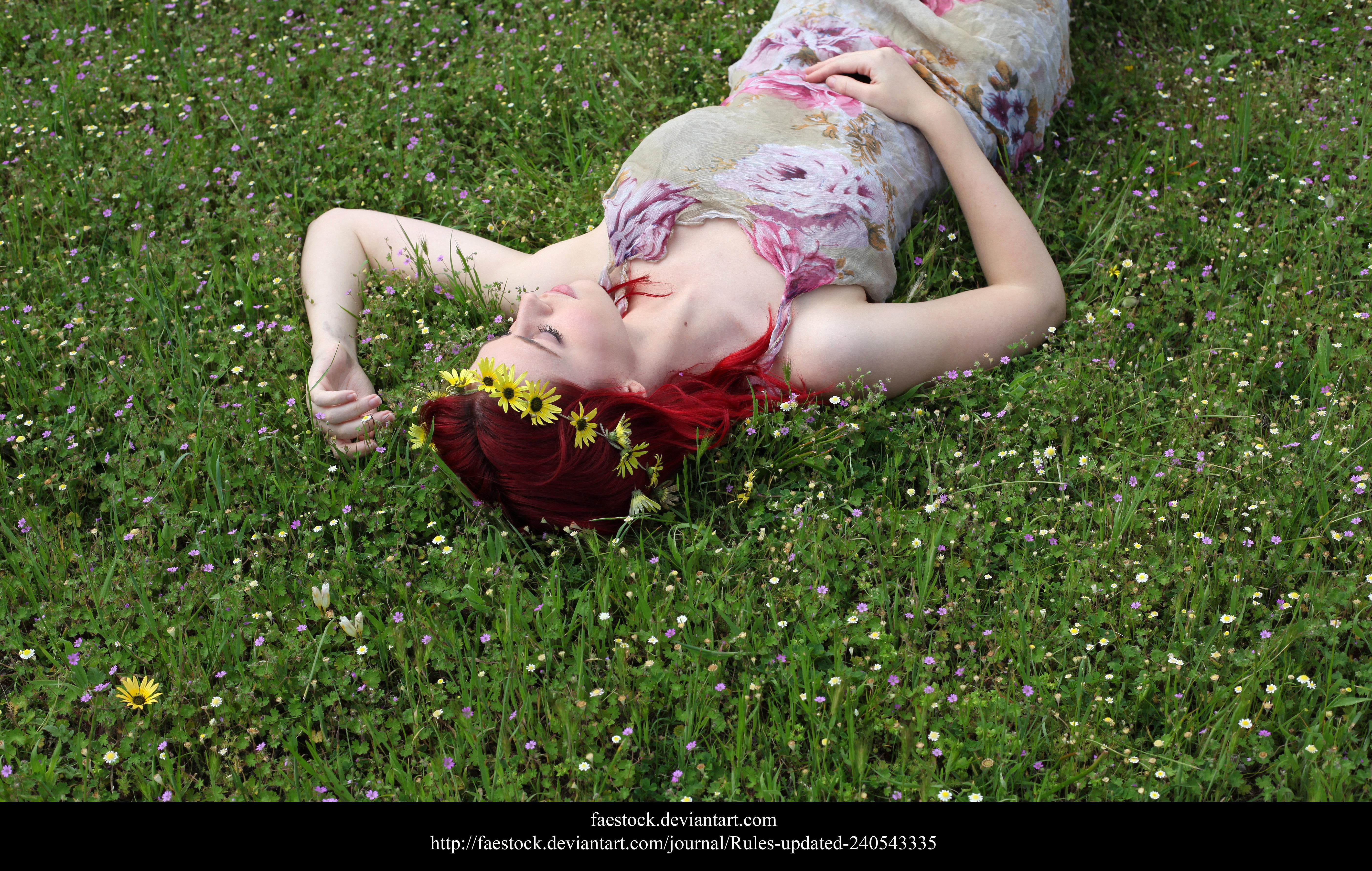 Spring5 by faestock