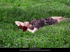 Meadow by faestock