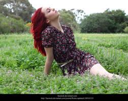 Meadow 6 by faestock