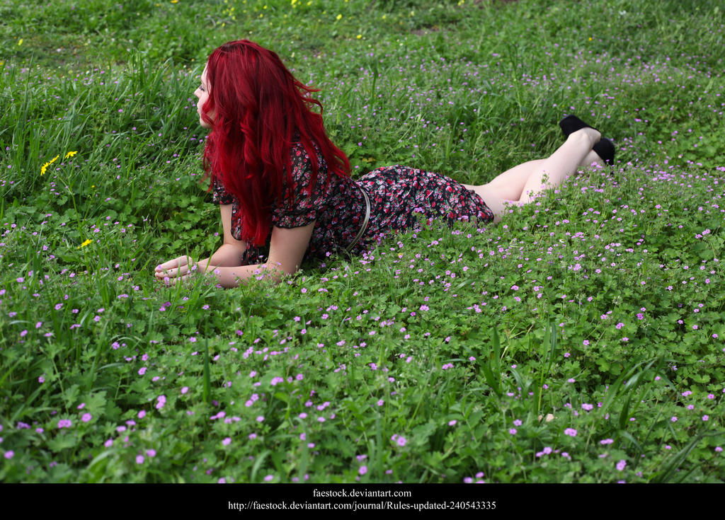 Meadow5 by faestock