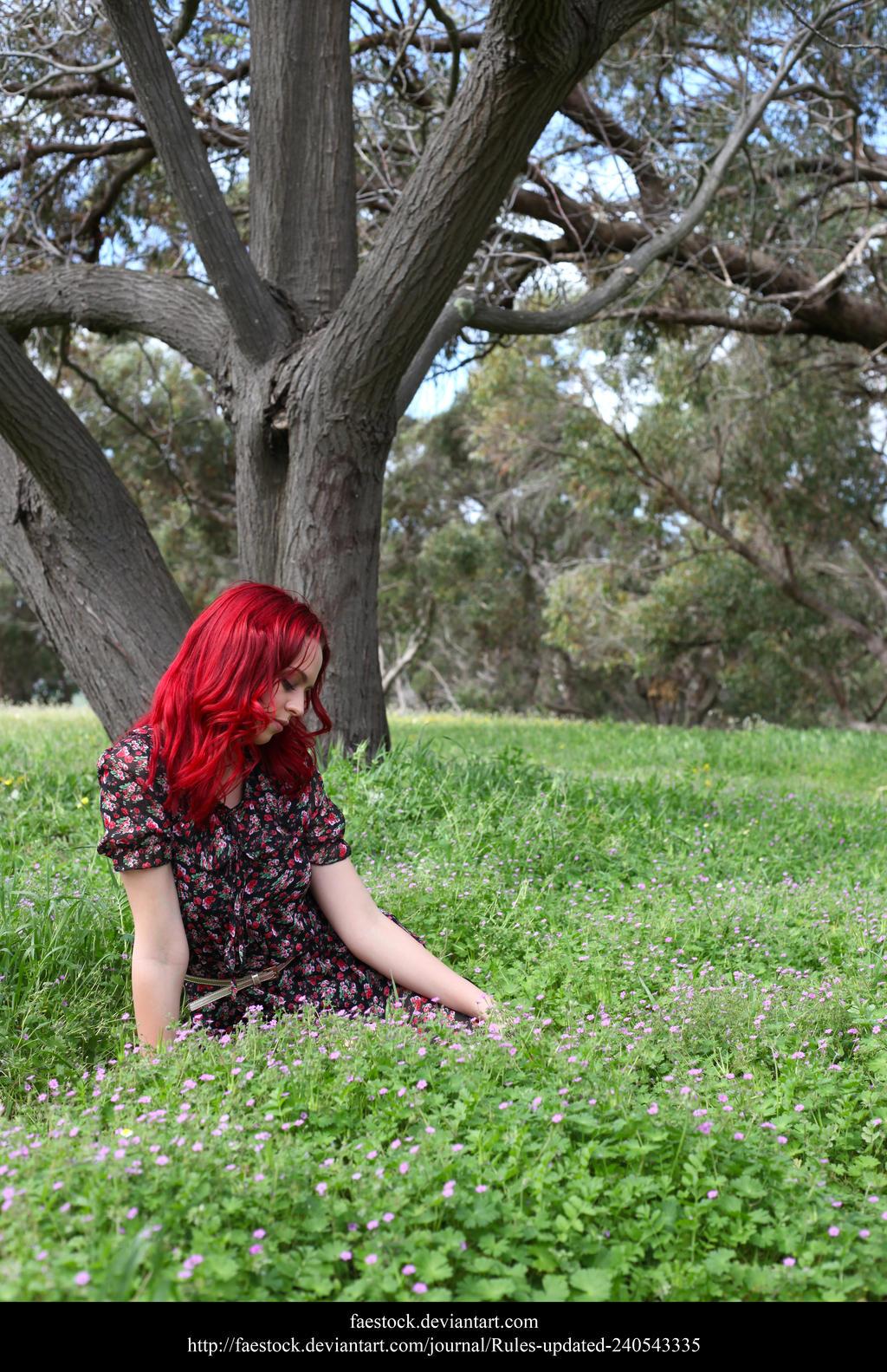 Meadow7 by faestock