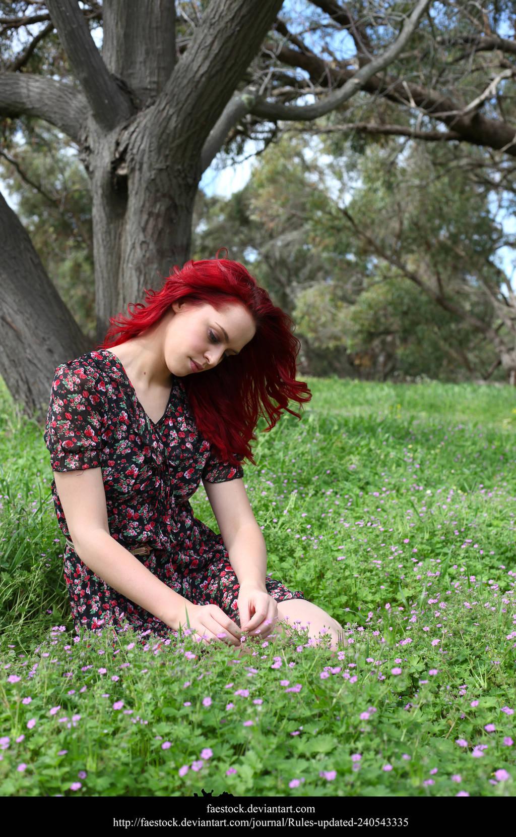 Meadow9 by faestock