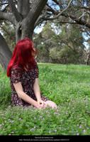 Meadow10 by faestock