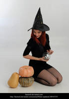 Witch by faestock