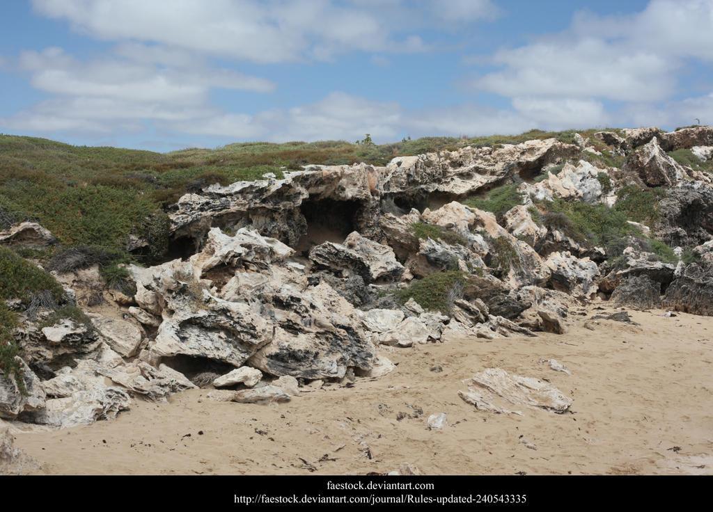 Penguin Island by faestock