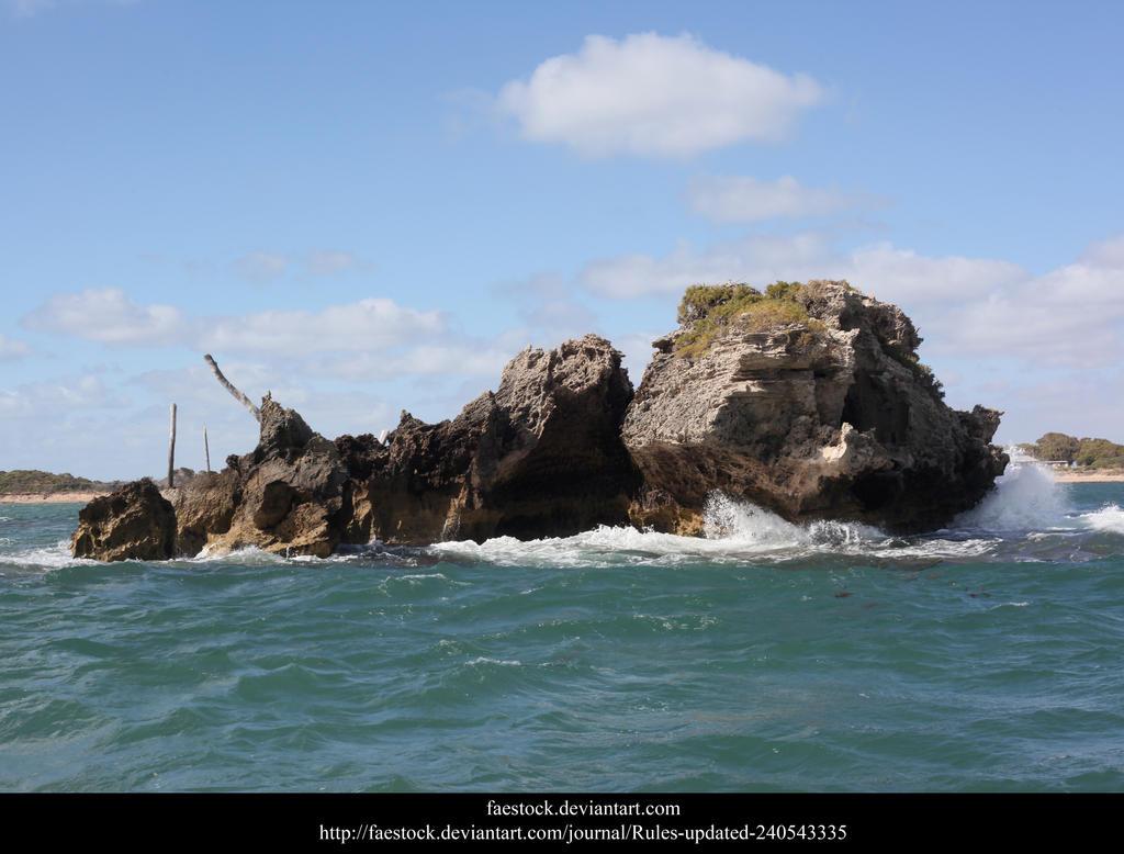 Penguin Island9 by faestock
