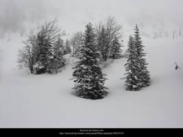 Snow by faestock