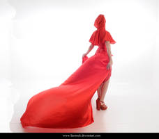 Red Riding Hood 13 by faestock