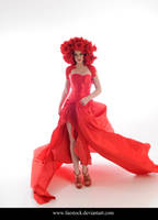 Rose Red 7 by faestock
