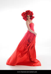 Rose Red10 by faestock