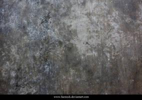 Mould Texture 2
