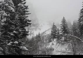 Snow 9 by faestock