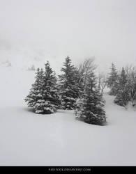 Snow 14 by faestock