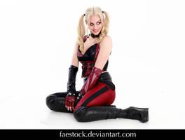 Harley Quinn 23 by faestock