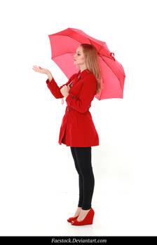 Rainy Days -  model stock reference 11