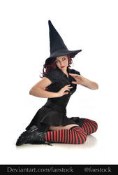Hocus Pocus -  Witch stock model reference  2
