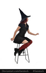 Hocus Pocus -  Witch stock model reference 8