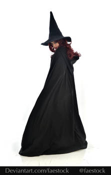 Hocus Pocus -  Witch stock model reference 14