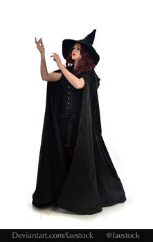 Hocus Pocus -  Witch stock model reference 17
