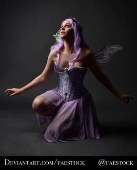 Purple Fairy - Full length pose reference photo 3