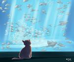 A cat dream