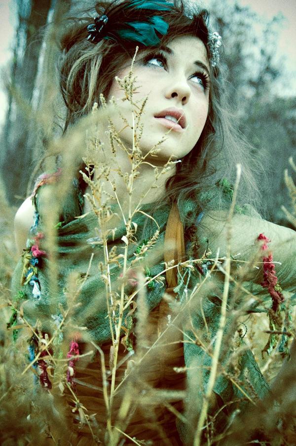 woodland fairy by holl...