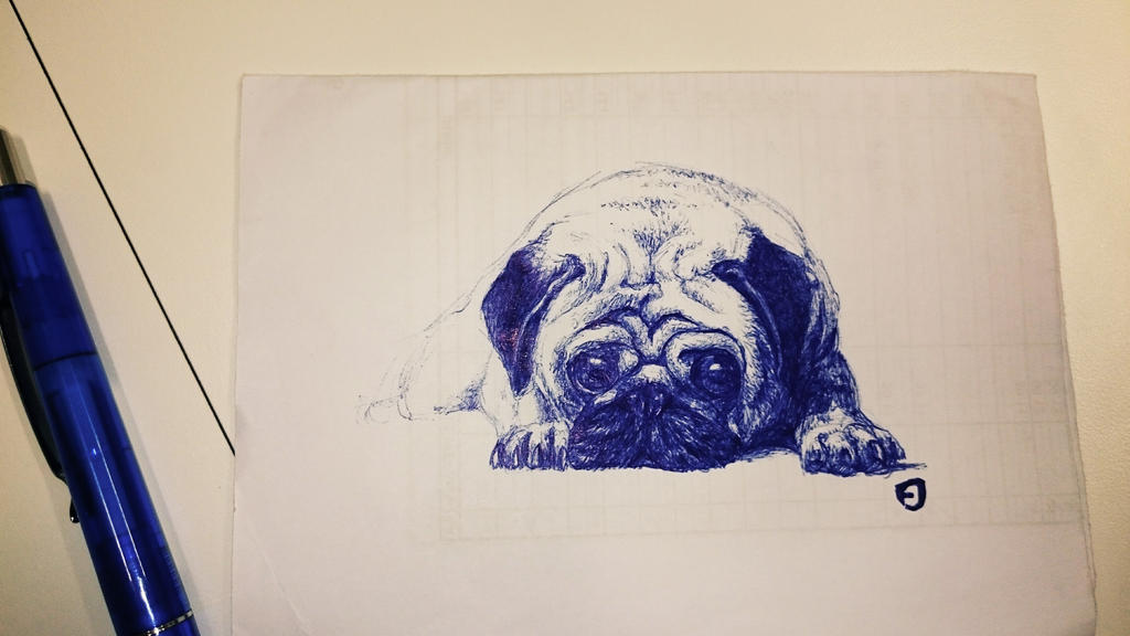 pug by Solocell