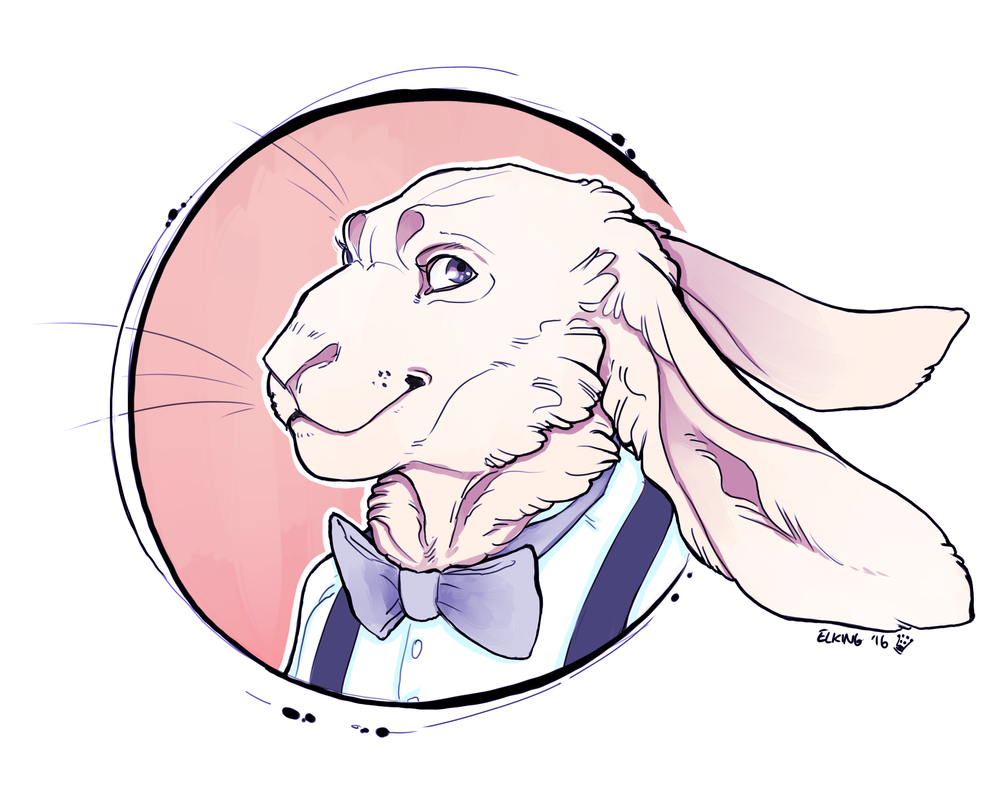 Bowtie Bunny by Deericious