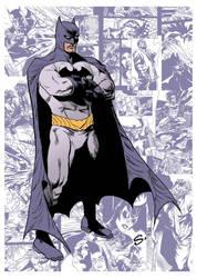 BATMAN. My run on the series