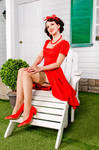 Pin-Up housewife 15
