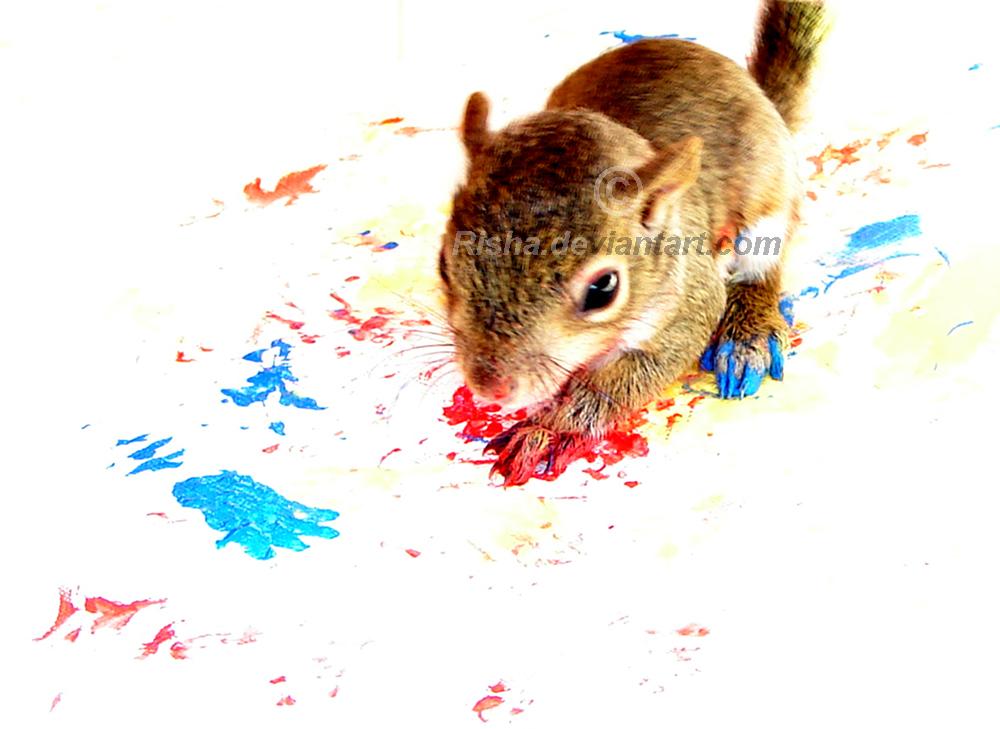 Why Squirrels Paint by risha
