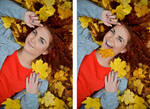 _autumn leaves 2_ by terorists
