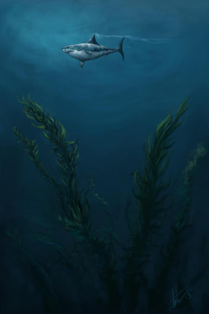 Deep Blue Sharkie by TCUmi777