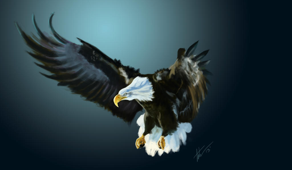 EagleSpeedPaint web by TCUmi777
