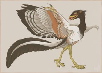 Archaeopteryx by Nothofagus-obliqua