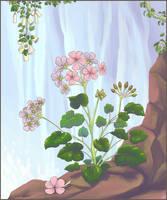 Feral by Nothofagus-obliqua