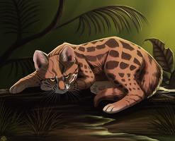 Jap kitty by Nothofagus-obliqua