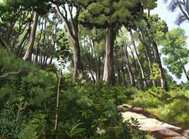 Forest by Nothofagus-obliqua
