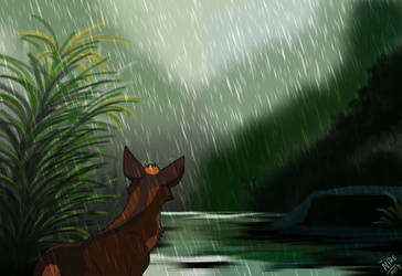 Amidst the rain by Nothofagus-obliqua
