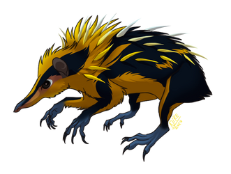 Weekly obscures 3: Lowland streaked tenrec