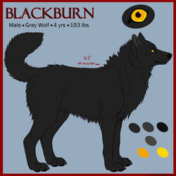 Blackburn Ref by LupinzPack