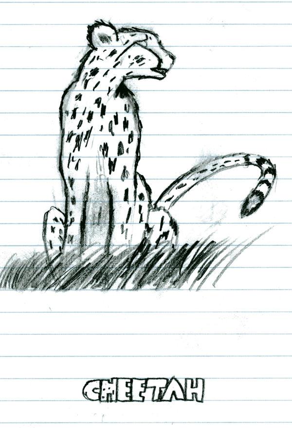 Cheetah sitting down drawing - photo#2