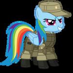 Rainbow Dash ''SCAT'' armor
