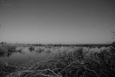Desolation by EmeraDay