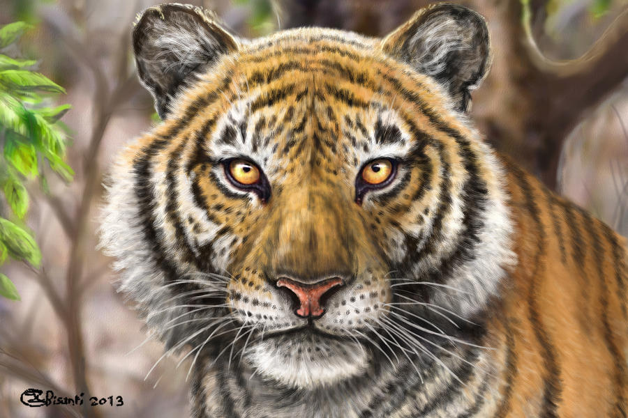 Eyes of the bengal tiger - digital by Bisanti