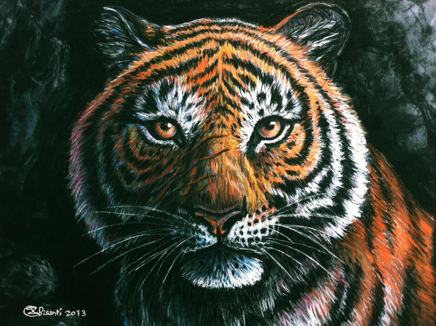 Eyes of the bengal tiger - traditional by Bisanti