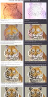 Eyes of the tiger - Painter 11 tutorial