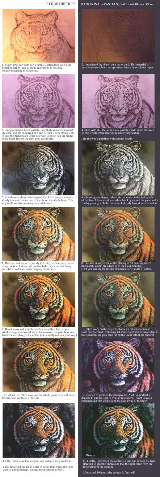 Eyes of the tiger - pastel tutorial by Bisanti